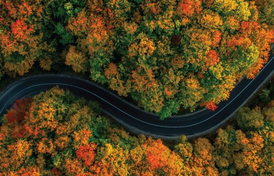 Join AAA - Legendary Roadside Assistance
